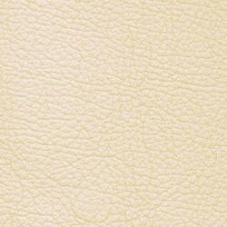 Нат. кожа (canvas)