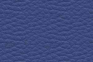 DPCV-4 синяя
