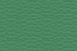 DPCV-6 светло-зеленая