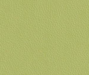 Экокожа (зеленый)